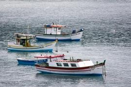 Florianopolis Island, Brazil